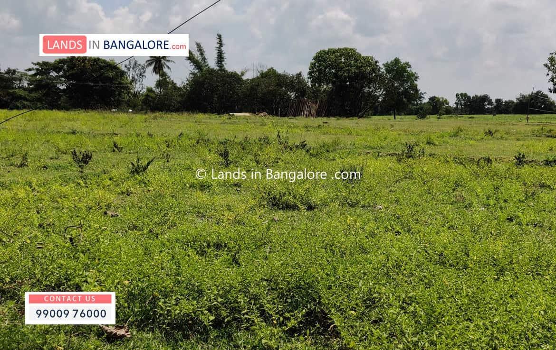 1 Acre Land for sale in Kanakapura road