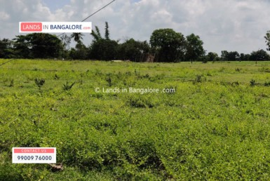 1 Acre Land for sale in Kanakapura road