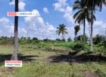 2 Acres Agricultural land for sale in Kaggalipura Kanakapura (1)