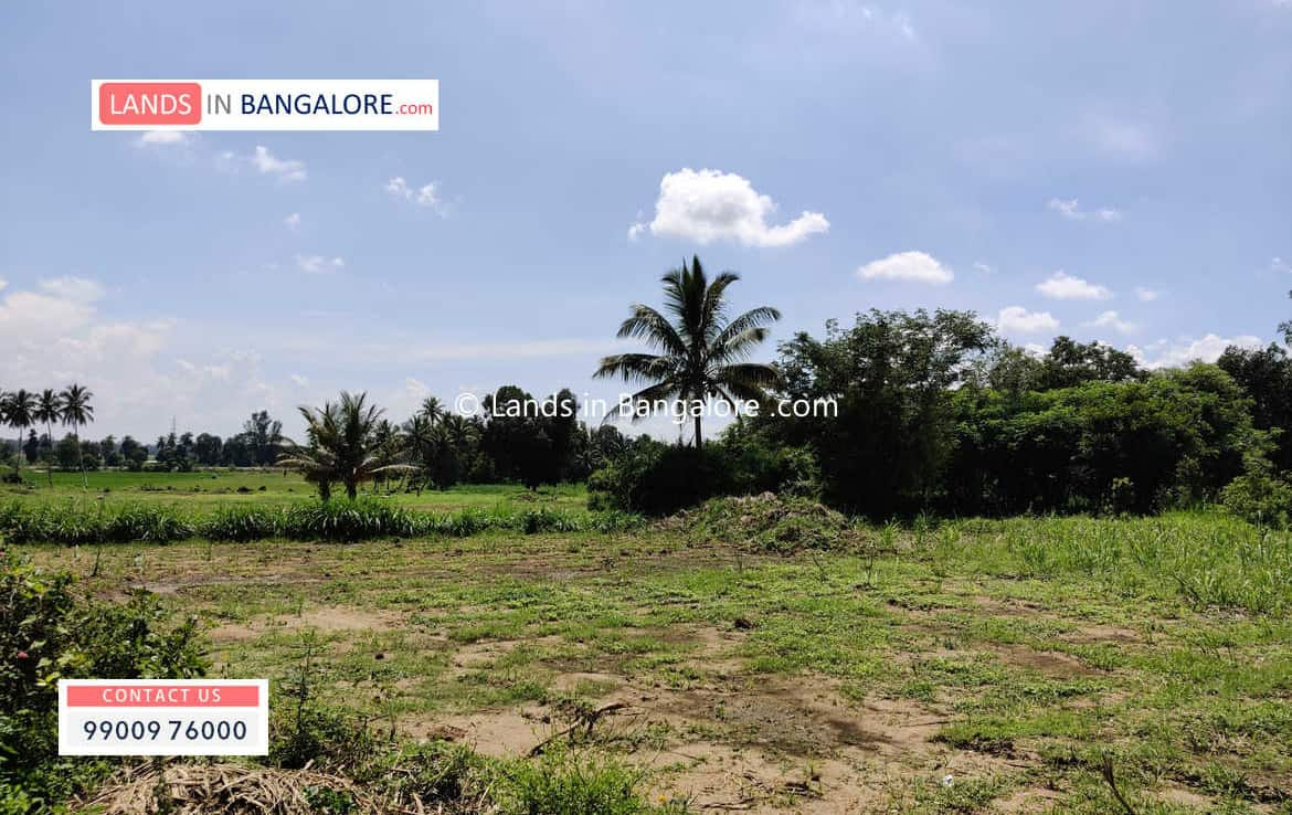 Agricultural land for sale in Kaggalipura
