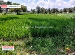 2 Acres land for sale in Kanakapura road Bangalore (4)
