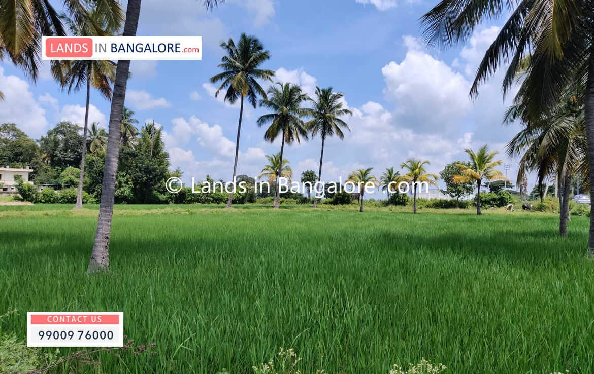 5 Acres Agricultural Land for sale in Kanakapura