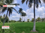 5 Acres Agricultural Land for sale in Kanakapura (2)