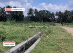 Agricultural land for sale in Somanahalli Kanakapura (1)