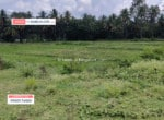 land for sale in Kaggalipura Kanakapura road