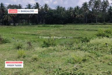 land for sale in Kaggalipura Kanakapura road