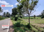 Cheap Agricultural land for sale in Kanakapura (2)