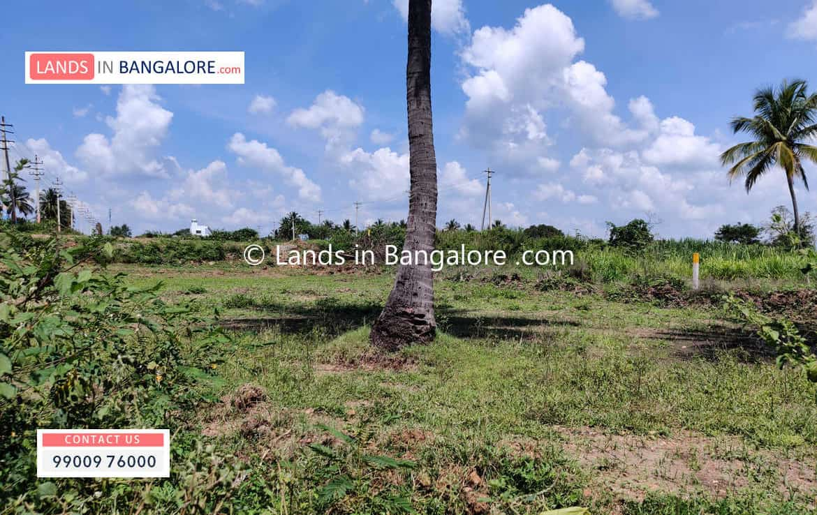 Cheap Agricultural land for sale in Kanakapura