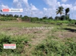 Cheap Agricultural land for sale in Kanakapura (4)
