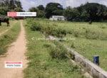 Farm Land for sale in Kanakapura road (4)