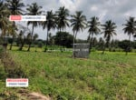 3 Acres Land for sale in Harohalli