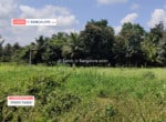 3 Acres agricultural land in Harohalli for sale