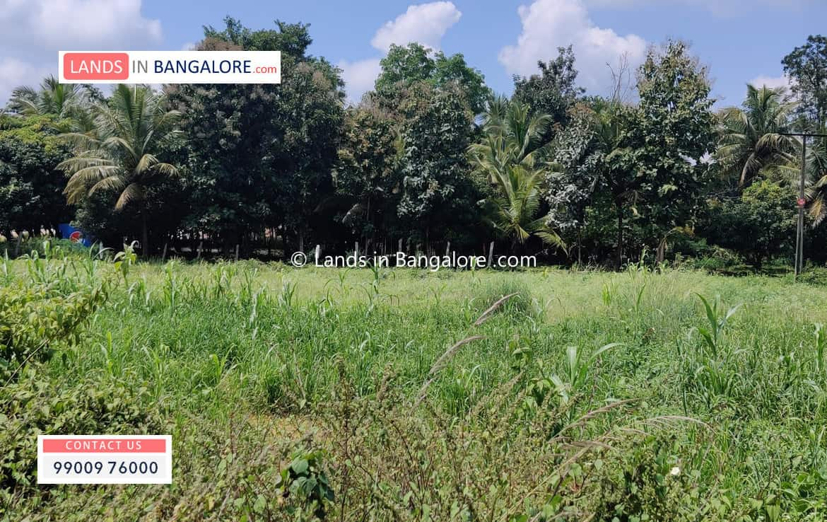 Acres agricultural land in Harohalli