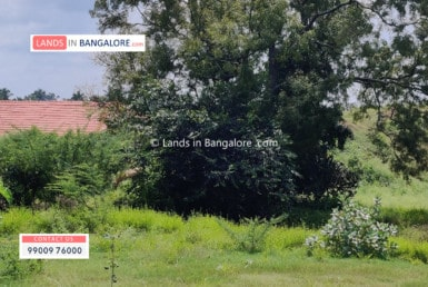 Land for sale in Harohalli Kanakapura road