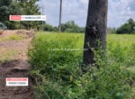 Cheap Agricultural land for sale in Harohalli Kanakapura