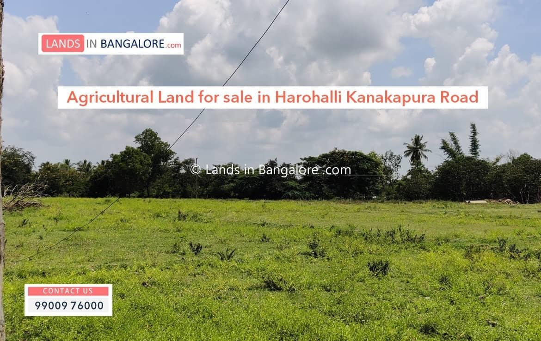 Agricultural land in Harohalli Kanakapura